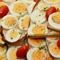 alimente metabolism